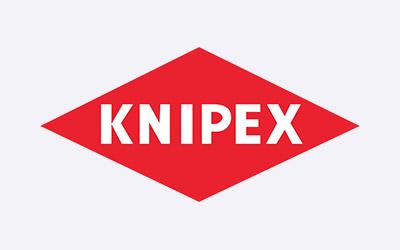 logo kinpex